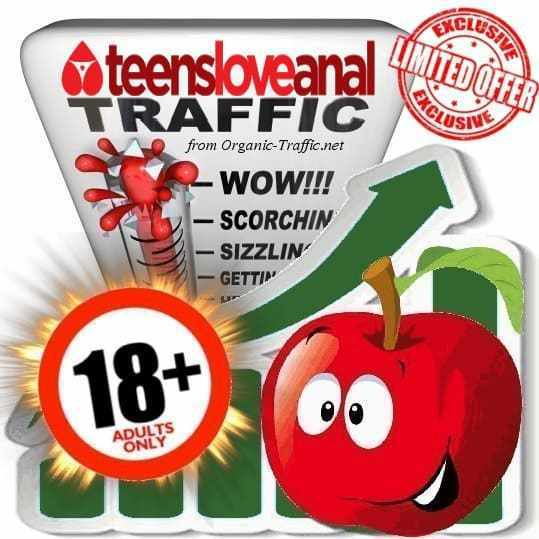 seowebsitetraffic-adult-traffic