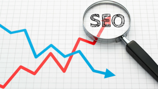 Thrive the site traffic with SEOWebsiteTraffic.net